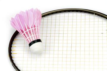 Badminton shutlecocks and racked