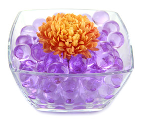 Beautiful flower in vase with hydrogel isolated on white