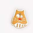delicious gingerbread cat