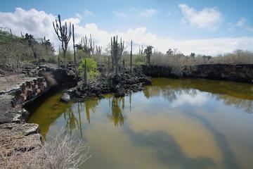 Poza redonda lagoon in Isabela island