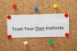 The phrase Trust Your Own Instincts on a cork notice board poster