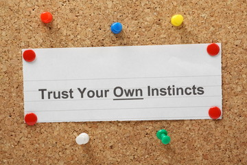 The phrase Trust Your Own Instincts on a cork notice board