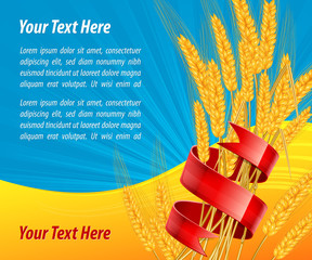 Ripe ear wheat with red ribbon, agricultural vector illustration