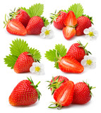 Set of strawberries with leaves and blossom isolated