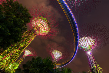 Gardens by the Bay - SuperTree Grove in Singapore
