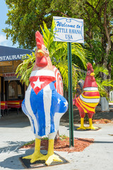 Rooster with the cuban and the american flags in Little Havana,