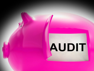 Audit Piggy Bank Message Means Inspection And Validation