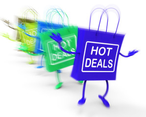 Hot Deals Bags Represent Discounts and Bargains