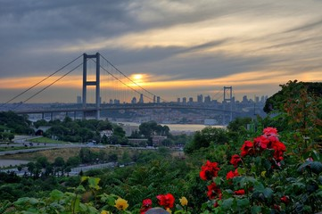 Bosphorsu Bridge in evening behind the roses