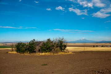Rural Washington State