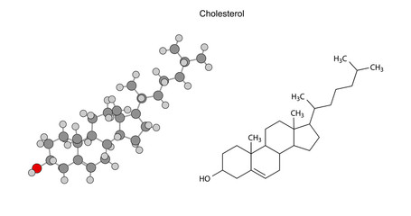 Structural chemical formulas of cholesterol molecule