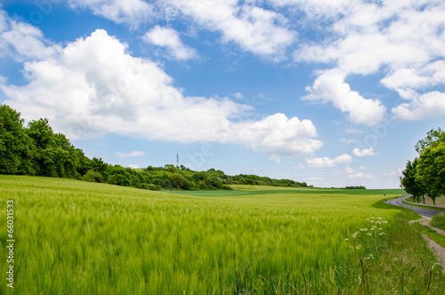 canvas print picture Landschaft in der Eifel 2