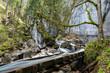 Leinwandbild Motiv Wasserlauf in der Pöllatschlucht im Allgäu