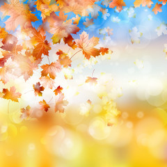 Autumn background with maple leaves. EPS 10