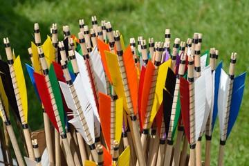 Colorful arrow flights