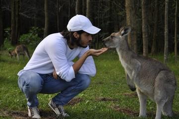 Amitié avec un kangourou