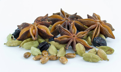 star anise ,barberry ,cinnamon, cardamom, on white background