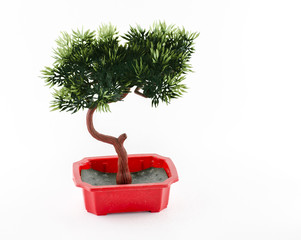 Plastic Bonsai in red pot on white background,isolated