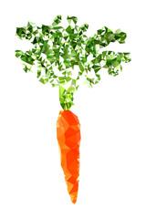 Polygonal Carrot Illustration