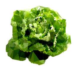 Polygonal Salad Illustration