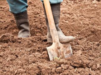man dig a shovel