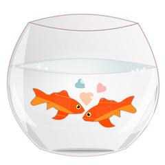 Duo de poissons rouges dans un bocal
