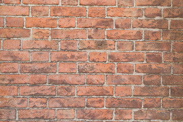 sunlit red brick wall background