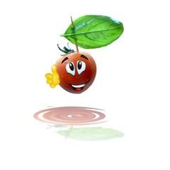 pomodoro basilico ok