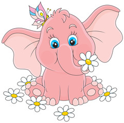 Pink baby elephant sitting among white daisies