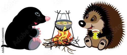 mole and hedgehog near campfire - 66060510