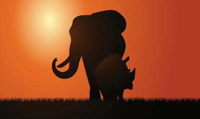Elefant und Nashorn