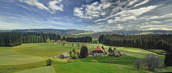 irgendwo im Schwarzwald