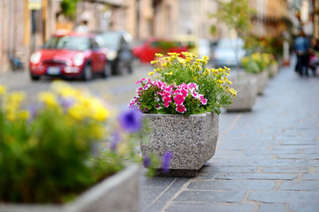 Flower stand in a small italian town