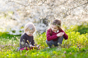 Two cute little sisters in blooming garden