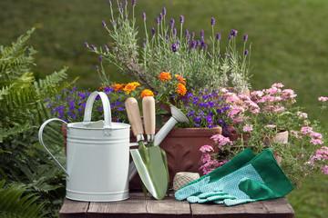 Gartenutensilien am Gartentisch