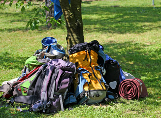 backpacks of Boy Scouts around the tree during an excursion