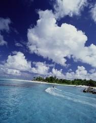 여름 바다풍경