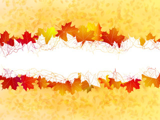 Autumn leaves background. plus EPS10