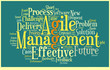 Agile Management Illustration