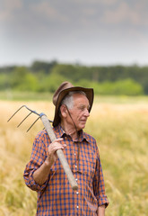 Old man in barley field
