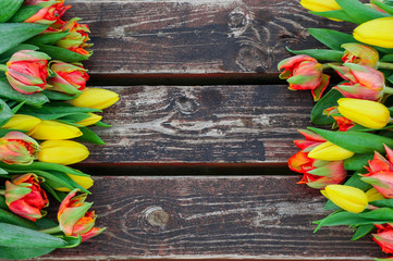Fresh yellow and red tulips on wooden background