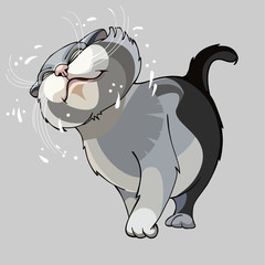 cartoon cat shakes