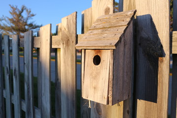 Bird House on a Fence