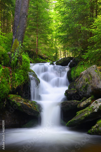 Mountain creek in the national park Sumava-Czech Republic - 66090191