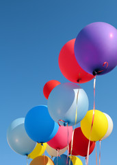 multicolored balloons,vertical composition