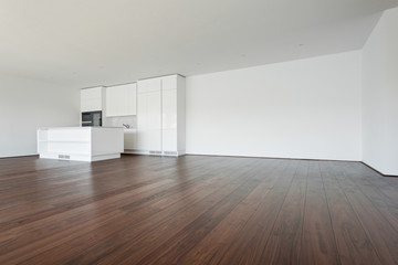beautiful empty apartment, white kitchen