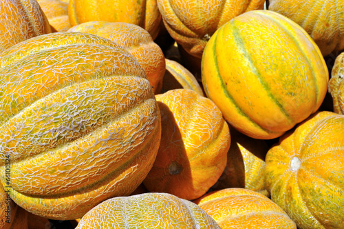 stack of ripe organic  melons