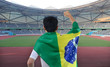 man holding the flag of Brazil celebrates on the stadium