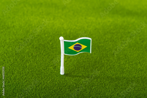 brazil flag on grass