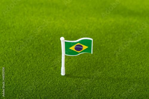 brazil flag on grass